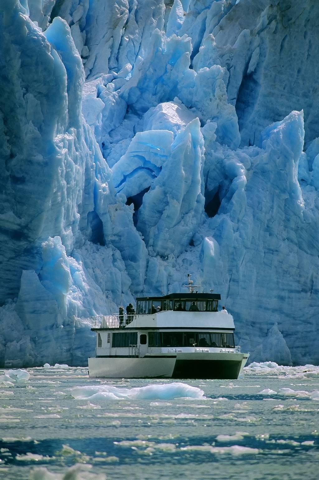 Tracy Arm Fjord Amp Glacier Explorer Allen Marine Tours